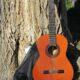 Житель Иванова лишился денег, продавая в Интернете гитару
