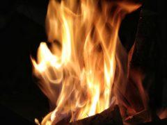 В Саранске ночью сгорел автобус