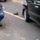 ДТП в Иванове: На улице Лежневской столкнулись Renault и Mitsubishi