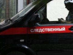В Липецке родители заявили о массовом отравлении в детском саду №2