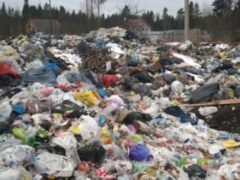 Черную Речку в Сертолово завалили мусором