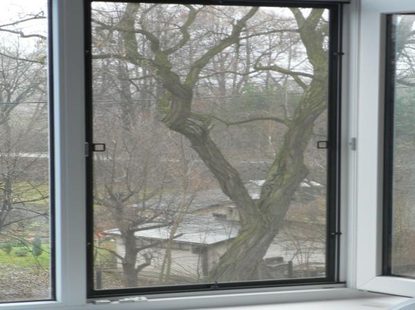 окно москитная сетка