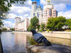 Жителей Москвы целый месяц будут развлекать на фестивале «Путешествие в Рождество»