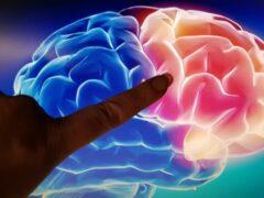 Ученые: во время сна мозг «чинит» свою ДНК