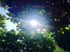 Электрокар Lightyear One с солнечной батареей выйдет на рынок в 2021 году