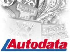В РФ могут создать платформу «АвтоДата» с данными о водителях и машинах