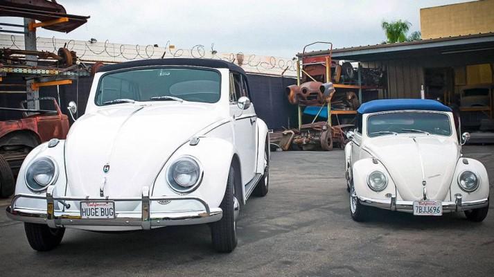 Volkswagen Beetle, Жук, самый большой