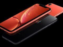 На смену iPhone XR в 2021 году придет iPhone 12s