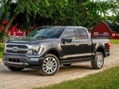 Ford протестировал обновленный гибридный внедорожник F-150
