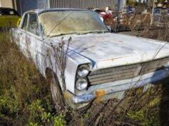 В США нашли заброшенную коллекцию автомобилей